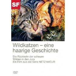 Wildkatzen - eine haarige Geschichte