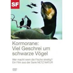 Kormorane: viel Geschrei um schwarze Vögel