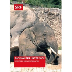 Dickhäuter unter sich (Schweiz aktuell spezial)