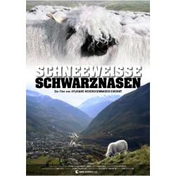 Snow-white Blacknoses (Schneeweisse Schwarznasen)